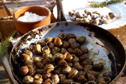 Cretan Snails