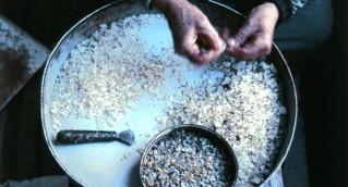 cleaning mastiha